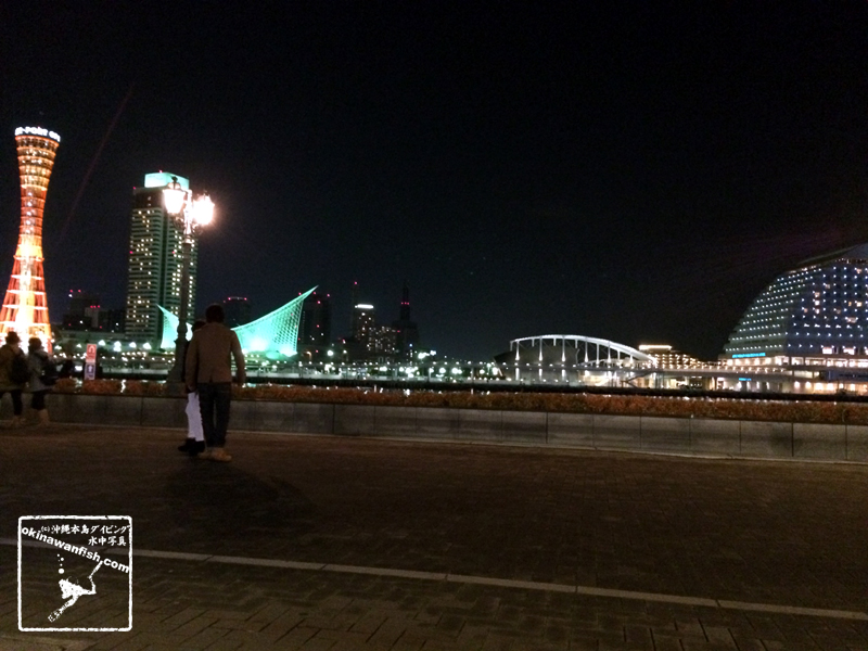 神戸ハーバーランド夜景