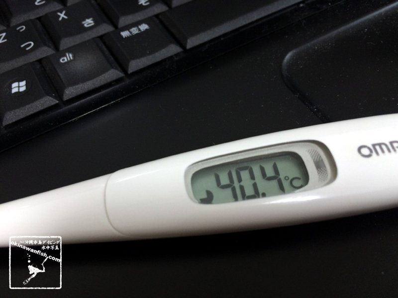 体温計 40度超え