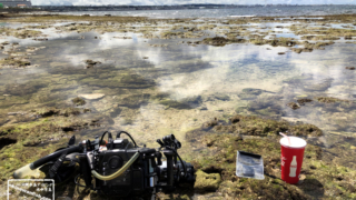 大潮干潮時の 沖縄本島 タイドプール(干潟)