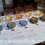 世界5大ウイスキー