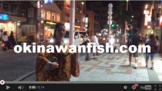 沖縄本島ダイビング水中写真国際通り