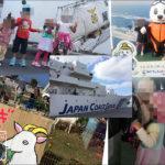 沖縄本島のイベントで撮影した写真