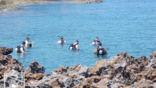 沖縄本島のダイビングで撮影したアメリカ人ダイバーの写真