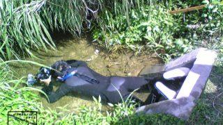 沖縄本島 沖縄 河川 淡水 水中撮影 水中写真