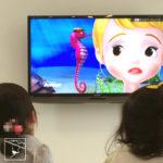 長女 3歳 タツノオトシゴ 生態を解説