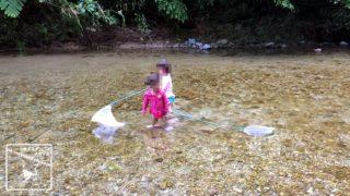 沖縄本島 川遊び 子連れ 魚捕り 安全 安心