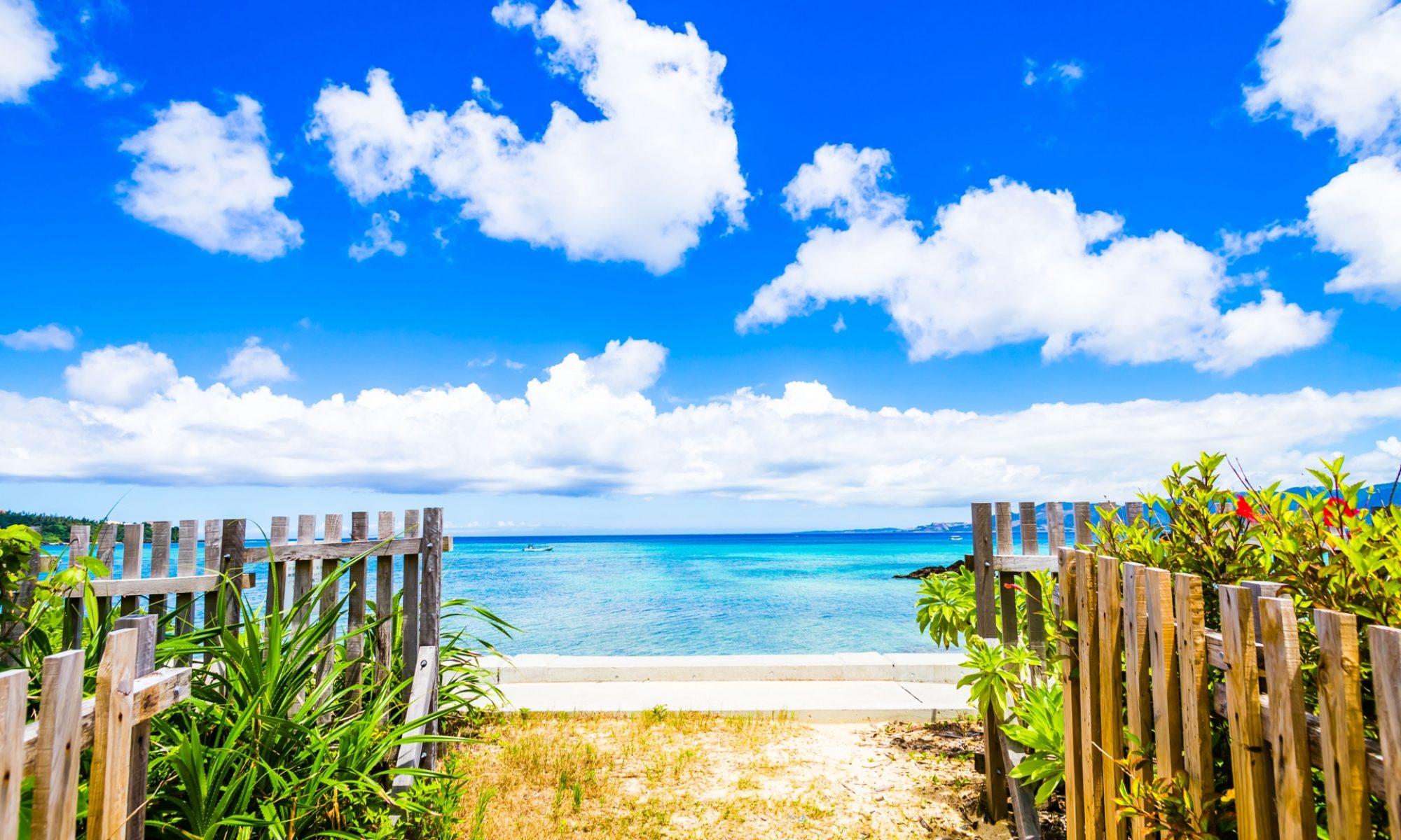 沖縄本島ダイビングの水中写真サイト OKINAWANFISH